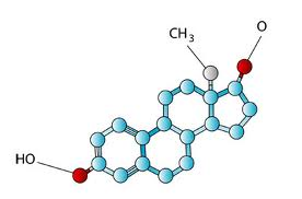 естественным путем производить больше тестостерона