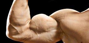 Польза тестостерона