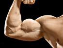 Польза тестостерона для спортсмена и не только