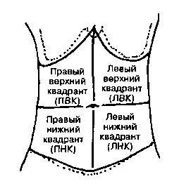 Схема живота 2