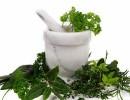 ТОП-9 трав для лечения и очистки печени