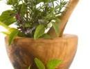 Растения для повышения потенции