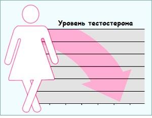 Какие продукты понижают тестостерон у женщин