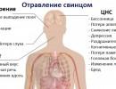 Как вывести свинец из организма
