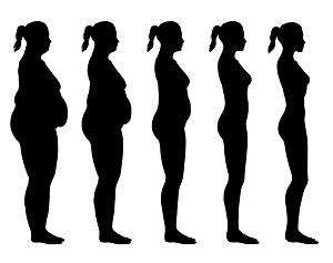 Расчет индекса массы тела