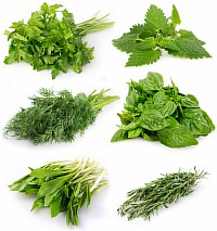 Свежая зелень для понижения сахара