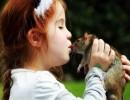 Мышиная лихорадки у детей: симптомы, стадии, осложнения