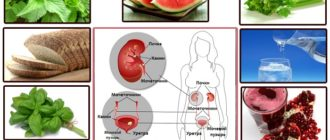 Схема диеты при мочекаменной болезни у женщин