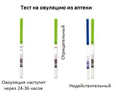 Определение наступления овуляции по тесту