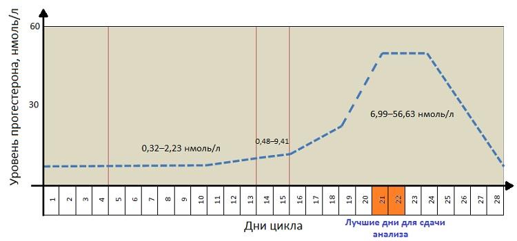 График изменения прогестерона во время менструального цикла