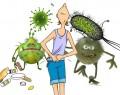 Гастроэнтерит у взрослых: причины, симптомы, диагностика, лечение
