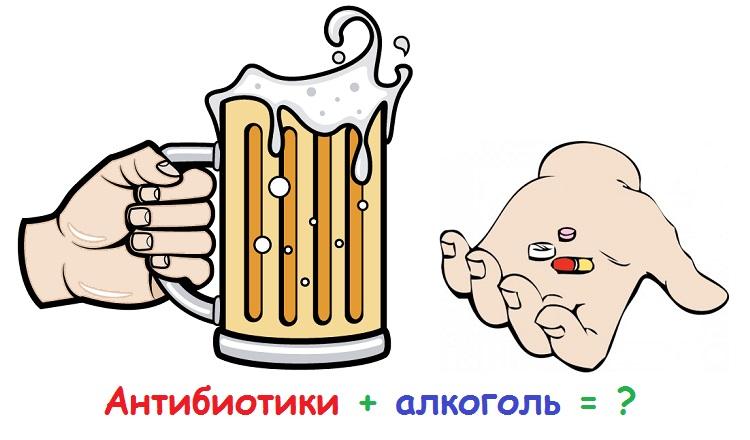 Можно ли пить при приеме антибиотиков шампанское