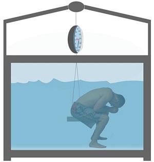 Подводное взвешивание (денситометрия)