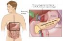 Поджелудочная железа и связанная с ней боль
